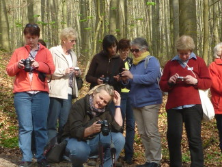 Entdecken Sie Ihre Kamera_Fotografieren im Wald_Dochow
